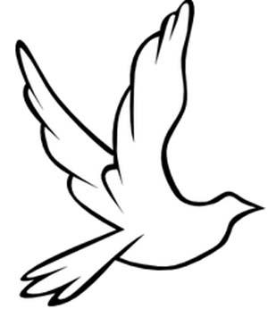 symbol-taube